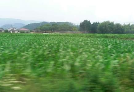 countryside01